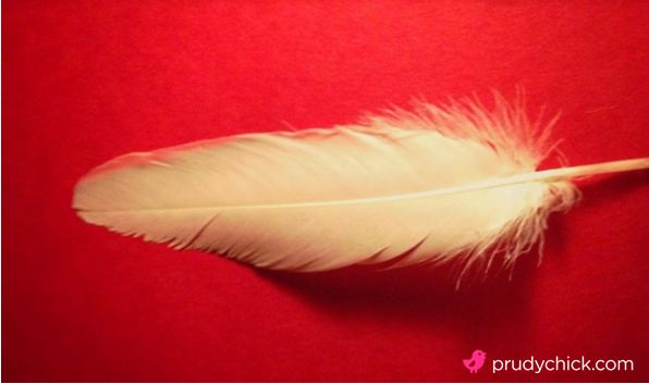 feather-red-L