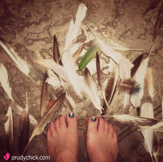 feathers-feet